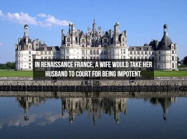 Château - IN RENAISSANCE FRANCE, A WIFE WOULD TAKE HER HUSBAND TO COURT FOR BEING IMPOTENT.