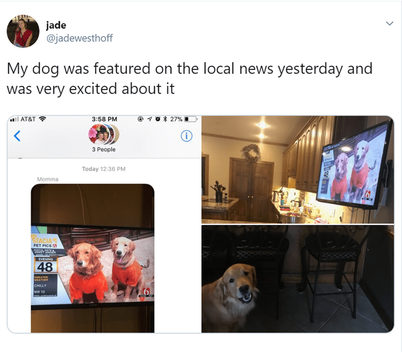 Product - jade @jadewesthoff My dog was featured on the local news yesterday and was very excited about it 27% AT&T 3:58 PM i 3 People ene F Today 12:36 PM 48 Momma STACIA'S PET PICS fa PISTOL PETEA EVENING 48 swEATER WEATHER CHILLY NW 10