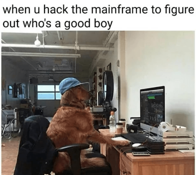 Furniture - when u hack the mainframe to figure out who's a good boy