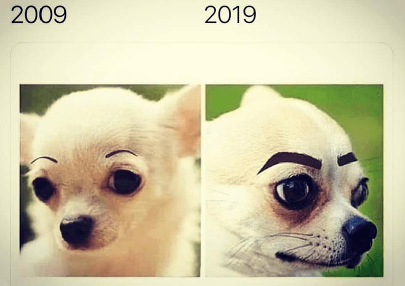 Face - 2009 2019