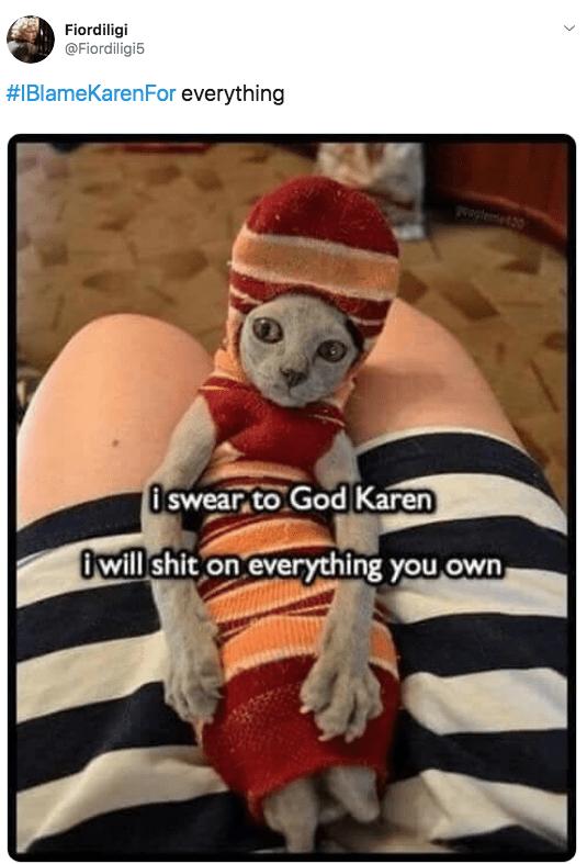 Photo caption - Fiordiligi @Fiordiligi5 #IBlameKarenFor everything te20 iswear to God Karen iwill shit on everything you own