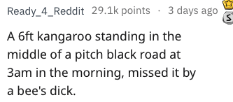 Text - Ready_4_Reddit 29.1k points 3 days ago A 6ft kangaroo standing in the middle of a pitch black road at 3am in the morning, missed it by a bee's dick.