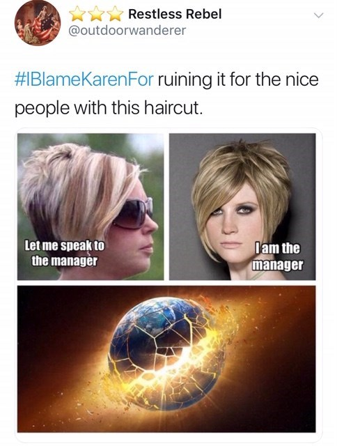 Hair - Restless Rebel @outdoorwanderer #1BlameKarenFor ruining it for the nice people with this haircut Dam the manager Let me speak to the manager