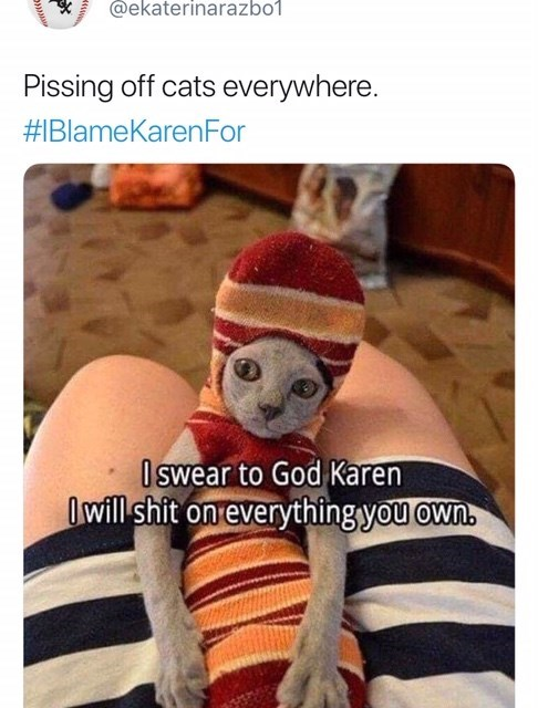 Photo caption - @ekaterinarazbo1 Pissing off cats everywhere. #1BlameKarenFor Oswear to God Karen Owill shit on everything you own