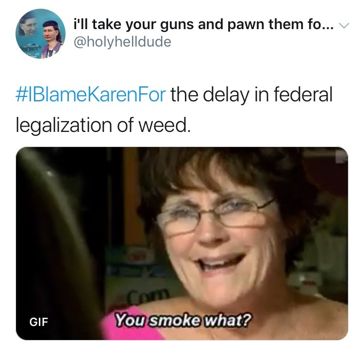 Face - i'll take your guns and pawn them fo... @holyhelldude #IBlameKarenFor the delay in federal legalization of weed. Com You smoke what? GIF
