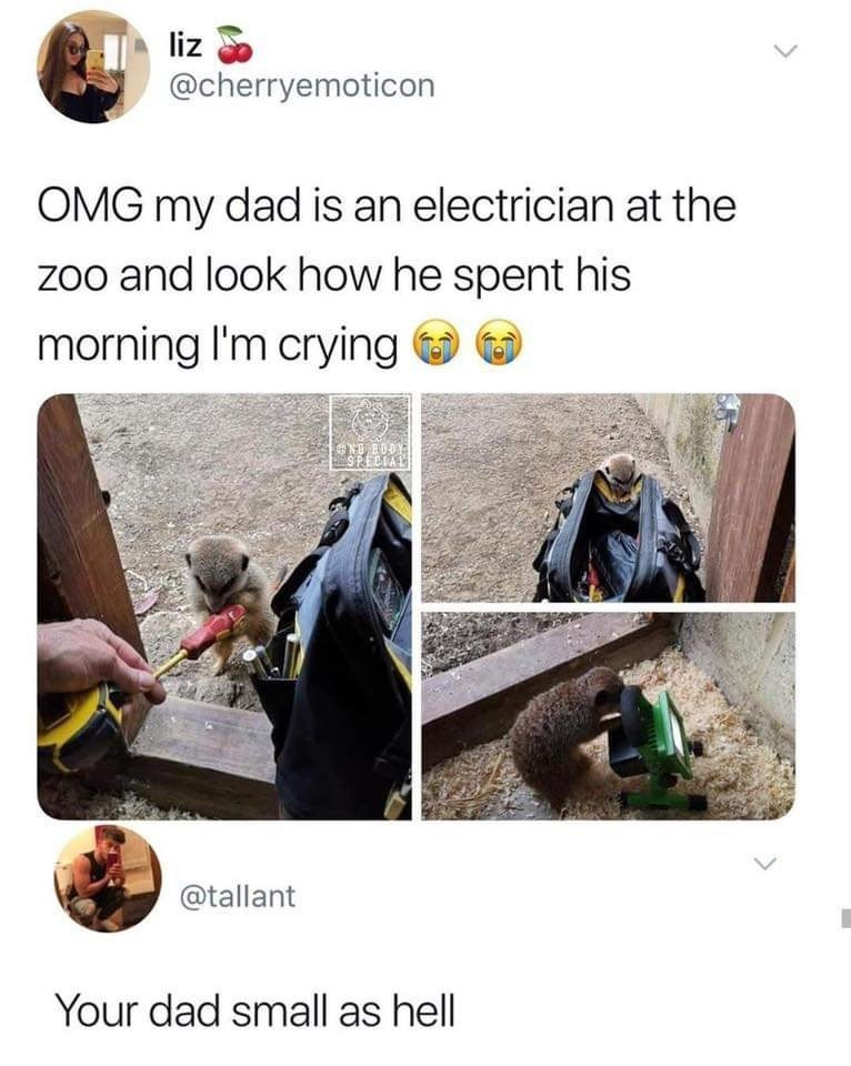 Adaptation - liz @cherryemoticon OMG my dad is an electrician at the zoo and look how he spent his morning I'm crying NGSPECIAL OOB ON @tallant Your dad small as hell