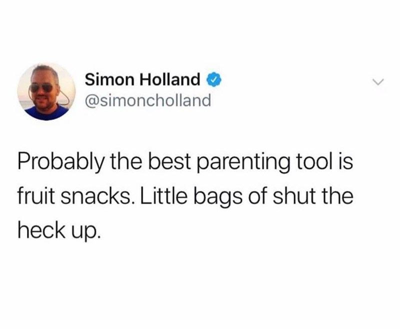 Text - Simon Holland @simoncholland Probably the best parenting tool is fruit snacks. Little bags of shut the heck up.