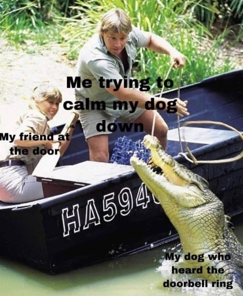 meme - Boat - Me trying to calm my dog down My friend at the door HA594 My dog who heard the doorbell ring