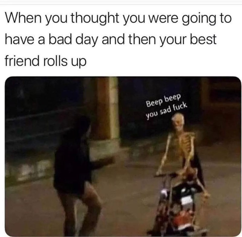 meme - Text - When you thought you were going to have a bad day and then your best friend rolls up Beep beep you sad fuck