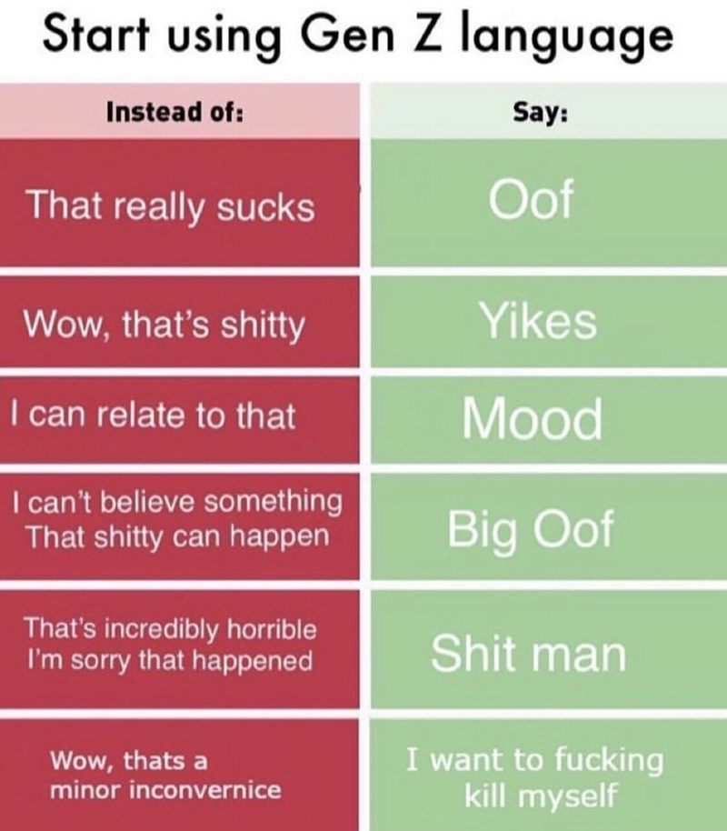 meme - Text - Start using Gen Z language Instead of: Say: Oof That really sucks Yikes Wow, that's shitty I can relate to that Mood I can't believe something That shitty can happen Big Oof That's incredibly horrible I'm sorry that happened Shit man I want to fucking kill myself Wow, thats a minor inconvernice