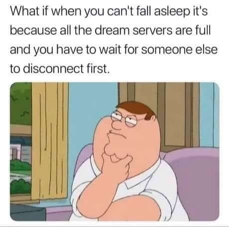 """Funny meme that reads, """"What if when you can't fall asleep it's because all the dream servers are full and you have to wait for someone else to disconnect first"""""""