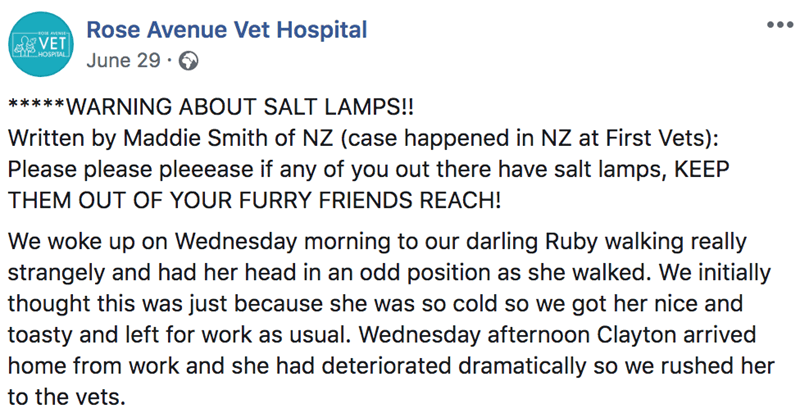Text - Rose Avenue Vet Hospital VET CYHOSPITAL June 29 *****WARNING ABOUT SALT LAMPS!! Written by Maddie Smith of NZ (case happened in NZ at First Vets) Please please pleeease if any of you out there have salt lamps, KEEP THEM OUT OF YOUR FURRY FRIENDS REACH! We woke up on Wednesday morning to our darling Ruby walking really strangely and had her head in an odd position as she walked. We initially thought this was just because she was so cold so we got her nice and toasty and left for work as us