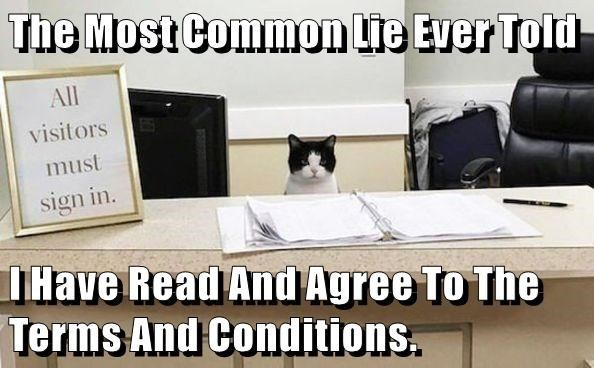 cat meme - Photo caption - The Most Common Lie Ever Told All visitors must sign in. IHave Read And Agree To The Terms And Conditions