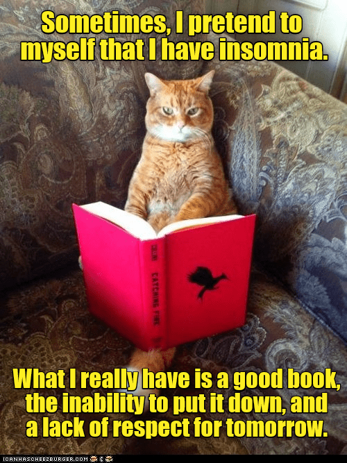cat meme - Cat - Sometimes, I pretend to myself that I have insomnia. What I really have is a good book the inability to put it down, and a lack of respect for tomorrow. ICANHASCHEE2EURGER cOM CATCHING FI