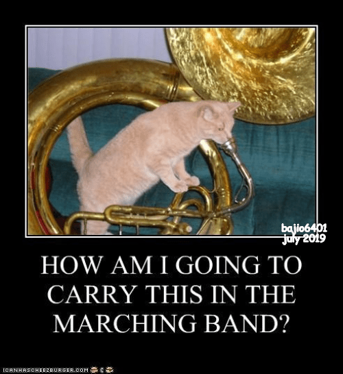cat meme - Brass instrument - bajio6401 July 2019 HOW AM I GOING TO CARRY THIS IN THE MARCHING BAND? ICANHASOHEEZBURGER.cOM