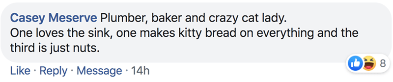 Text - Casey Meserve Plumber, baker and crazy cat lady. One loves the sink, one makes kitty bread on everything and the third is just nuts. Like Reply Message 14h