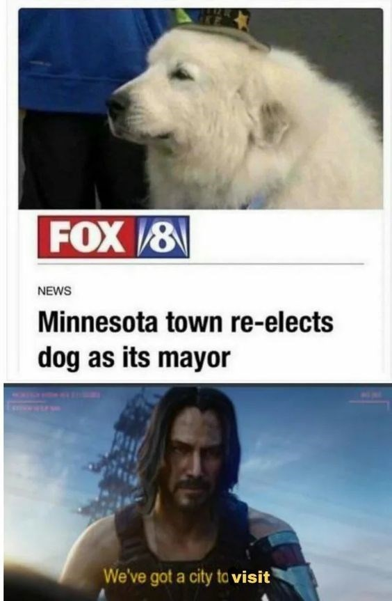Canidae - FOX/8 NEWS Minnesota town re-elects dog as its mayor We've got a city to visit