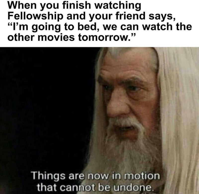 """Facial expression - When you finish watching Fellowship and your friend says, """"I'm going to bed, we can watch the other movies tomorrow."""" Things are now in motion that cannot be undone."""