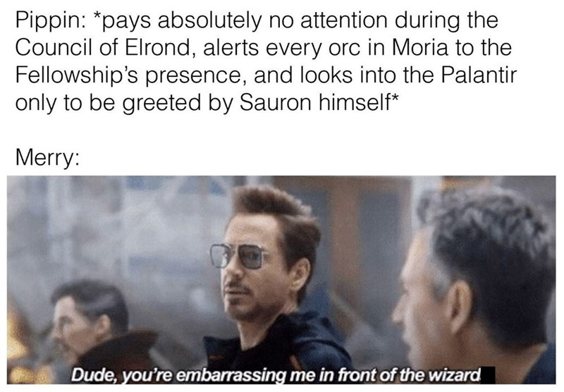 Text - Pippin: *pays absolutely no attention during the Council of Elrond, alerts every orc in Moria to the Fellowship's presence, and looks into the Palantir only to be greeted by Sauron himself* Merry: Dude, you're embarrassing me in front of the wizard