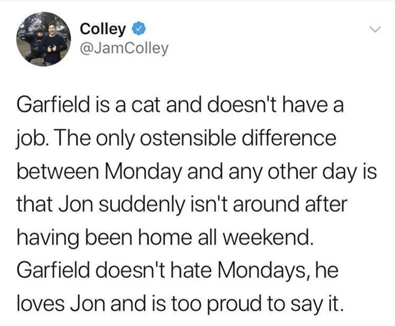 Text - Colley @JamColley Garfield is a cat and doesn't have a job. The only ostensible difference between Monday and any other day is that Jon suddenly isn't around after having been home all weekend Garfield doesn't hate Mondays, he loves Jon and is too proud to say it.