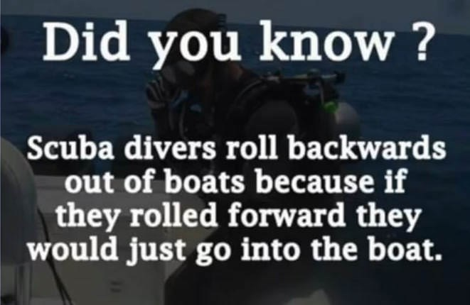 Font - Did you know? Scuba divers roll backwards out of boats because if they rolled forward they would just go into the boat.