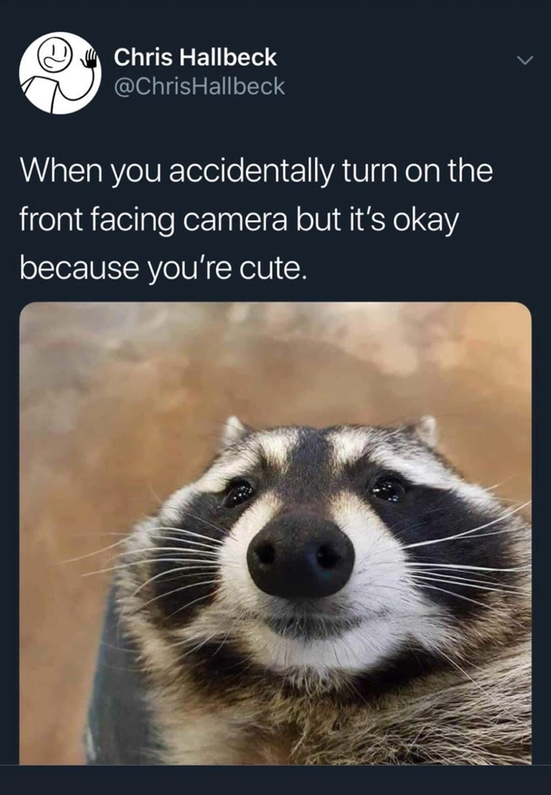 """Meme - """"When you accidentally turn on the front facing camera but it's okay because you're cute."""""""