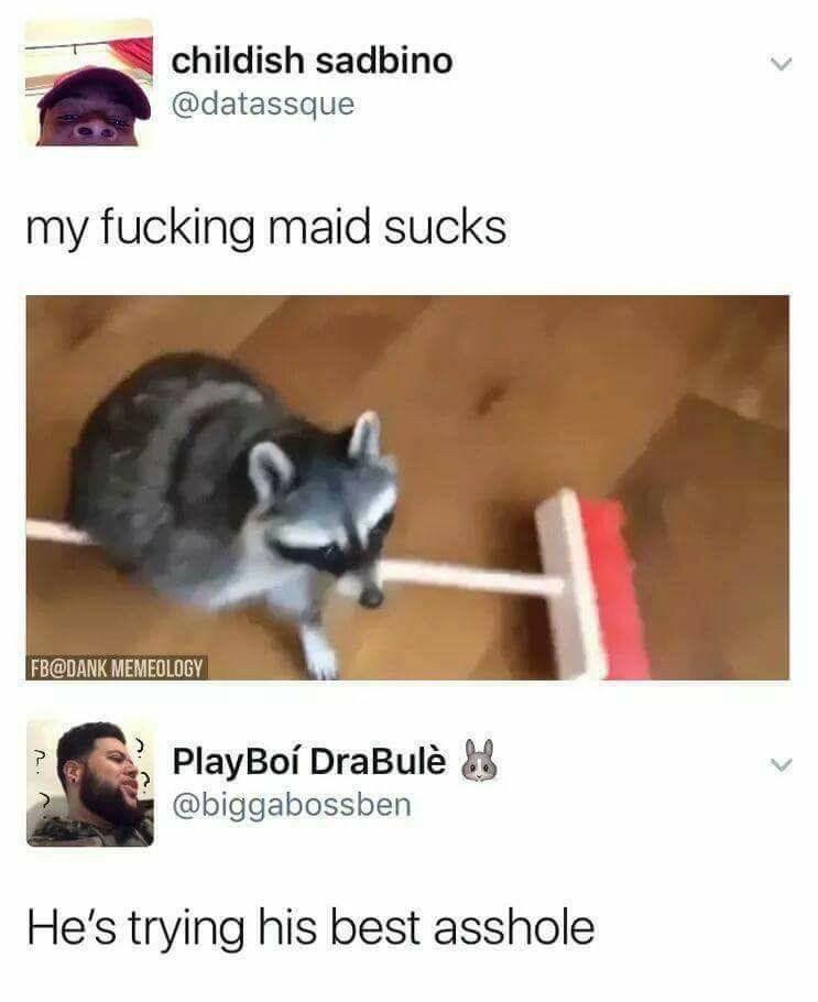 "Meme - ""My fucking maid sucks; He's trying his best asshole"""