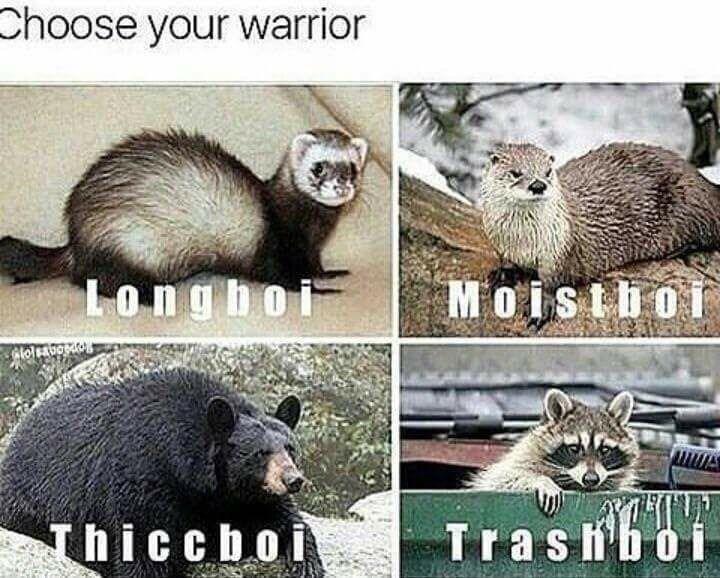Vertebrate - Choose your warrior Longboi Moistho Trasboi Thiccboi