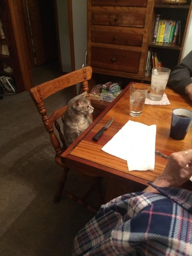 grandparents and pets - Table