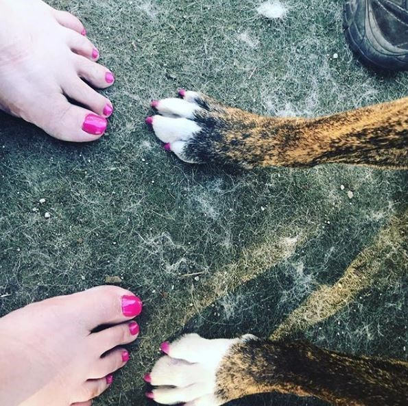 dog pedicure - Leg