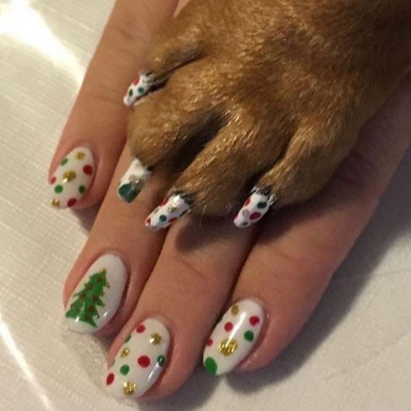 dog pedicure - Nail