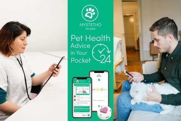 Skin - MYSTETHO for pets Pet Health Advice in Your 24 Pocket