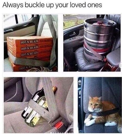 Product - Always buckle up your loved ones HOT NREADY HOT N READY HOT NREADY