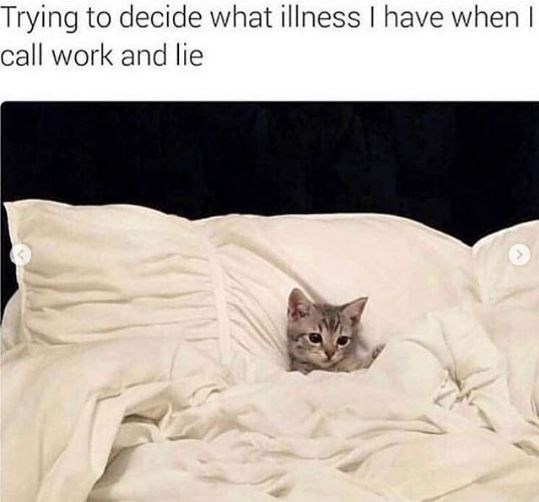Cat - Trying to decide what illness I have when I call work and lie