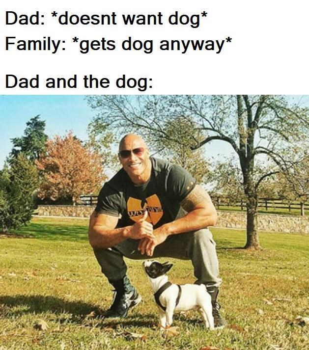 "Mammal - Dad: *doesnt want dog* Family: ""gets dog anyway* Dad and the dog:"