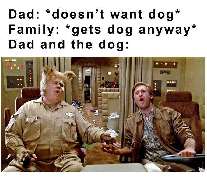 Photo caption - Dad: *doesn't want dog* Family: *gets dog anyway* Dad and the dog:
