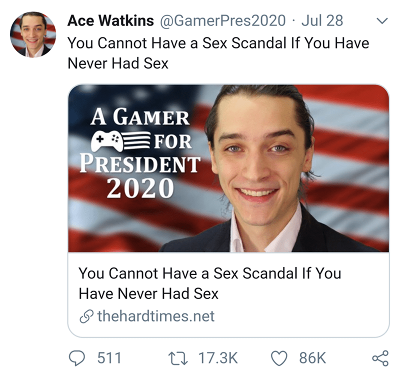 funny tweet - Text - Ace Watkins @GamerPres2020 Jul 28 You Cannot Have a Sex Scandal If You Have Never Had Sex A GAMER FOR PRESIDENT 2020 You Cannot Have a Sex Scandal If You Have Never Had Sex thehardtimes.net 1117.3K 511 86K