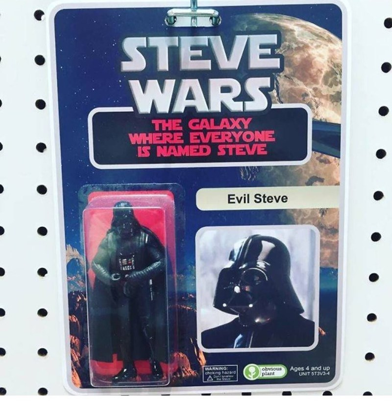 weird toy - Darth vader - STEVE WARS THE GALAXY WHERE EVERYONE IS NAMED STEVE Evil Steve Ages 4 and up UNIT 5T3V3-4 obvious plant WARNING: arc