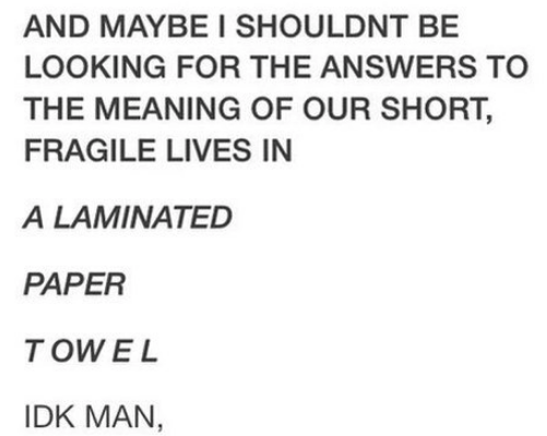 Text - AND MAYBE I SHOULDNT BE LOOKING FOR THE ANSWERS TO THE MEANING OF OUR SHORT, FRAGILE LIVES IN A LAMINATED PAPER T OWEL IDK MAN,