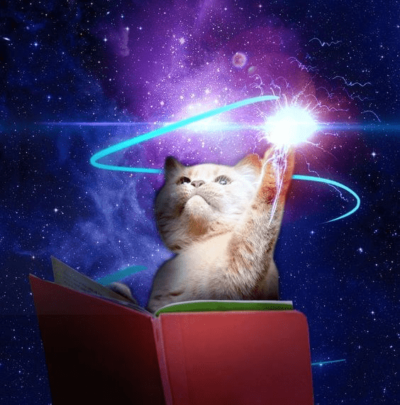 cat touching the power of the universe with his gentle yet powerful claws