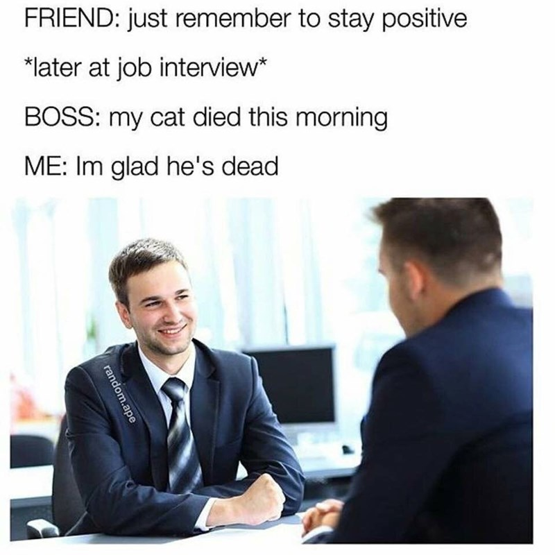 job interview - Job - FRIEND: just remember to stay positive *later at job interview* BOSS: my cat died this morning ME: Im glad he's dead random.ape