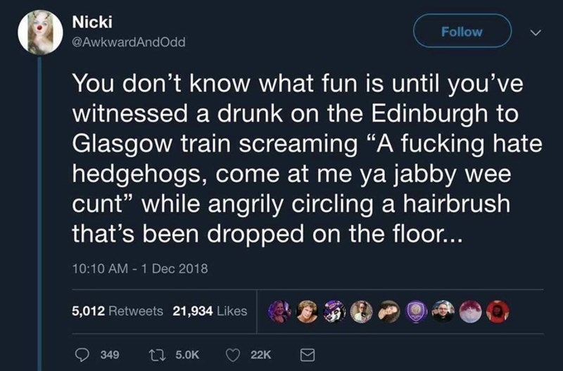 """Text - Nicki Follow @AwkwardAndOdd You don't know what fun is until you've witnessed a drunk on the Edinburgh to Glasgow train screaming """"A fucking hate hedgehogs, come at me ya jabby wee cunt"""" while angrily circling a hairbrush that's been dropped on the floor... 10:10 AM 1 Dec 2018 5,012 Retweets 21,934 Likes Li 5.0K 349 22K ΙΣ"""