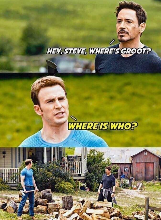 Poster - HEV,STEVE, WHERE'S GROOT? WHERE IS WHO?