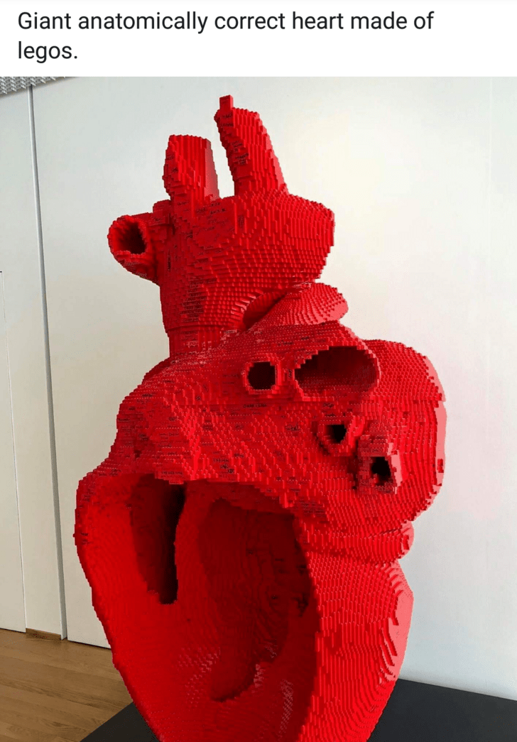 mildly interesting - Red - Giant anatomically correct heart made of legos.