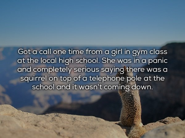 Text - Got a call one time from a girl in gym class at the local high school. She was in a panic and completely serious saying'the re was a squirrel on top of a telephone pole at the school and it wasn't coming down.