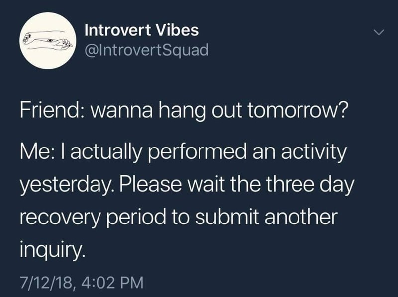 Text - Introvert Vibes @Introvert Squad Friend: wanna hang out tomorrow? Me: I actually performed an activity yesterday. Please wait the three day recovery period to submit another inquiry. 7/12/18, 4:02 PM