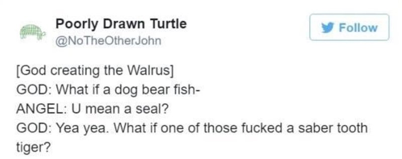 creating animals - Text - Poorly Drawn Turtle @NoTheOtherJohn Follow [God creating the Walrus] GOD: What if a dog bear fish- ANGEL: U mean a seal? GOD: Yea yea. What if one of those fucked a saber tooth tiger?
