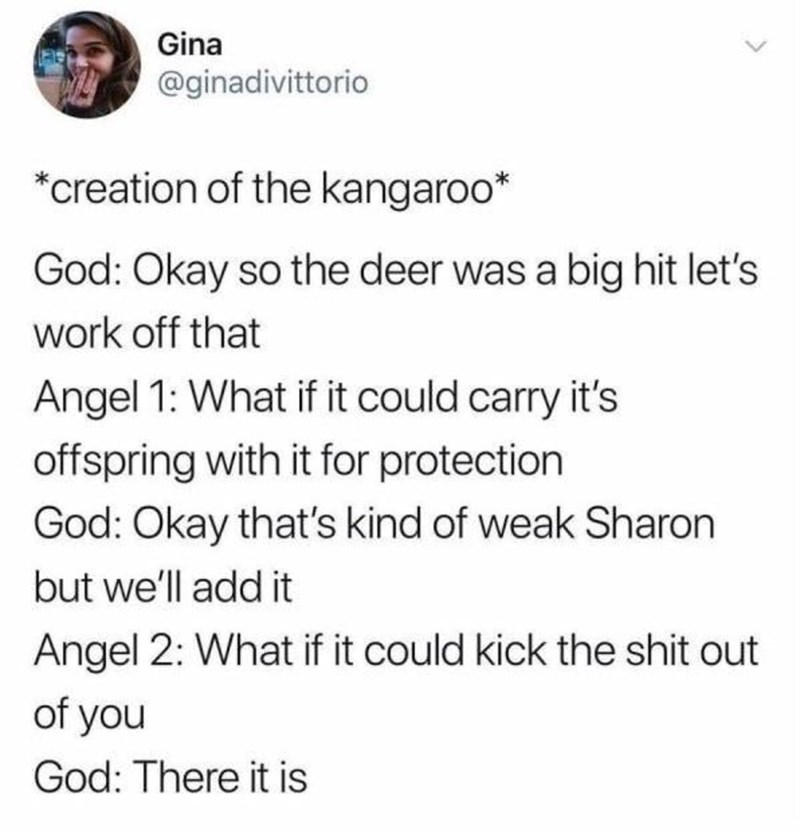 creating animals - Text - Gina @ginadivittorio *creation of the kangaroo* God: Okay so the deer was a big hit let's work off that Angel 1: What if it could carry it's offspring with it for protection God: Okay that's kind of weak Sharon but we'll add it Angel 2: What if it could kick the shit out of you God: There it is