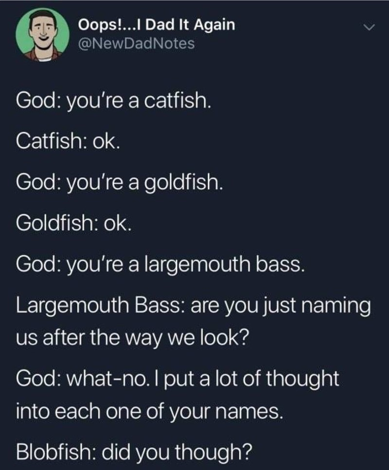 creating animals - Text - Oops!...I Dad It Again @NewDadNotes God: you're a catfish. Catfish: ok God: you're a goldfish Goldfish: ok. God: you're a largemouth bass. Largemouth Bass: are you just naming us after the way we look? God: what-no. I put a lot of thought into each one of your names. Blobfish: did you though?