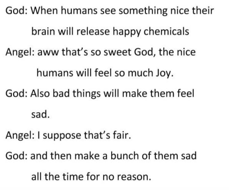 creating animals - Text - God: When humans see something nice their brain will release happy chemicals Angel: aww that's so sweet God, the nice humans will feel so much Joy. God: Also bad things will make them feel sad. Angel: I suppose that's fair. God: and then make a bunch of them sad all the time for no reason.